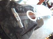 SEQUOIA Acoustic Guitar SQCVG39N ACOUSTIC GUITAR
